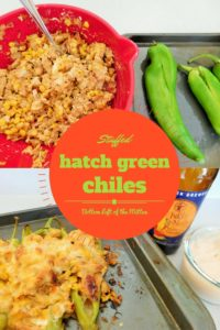 Stuffed Hatch Green Chiles | Bottom Left of the Mitten