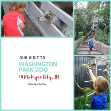 Visit to Washington Park Zoo in Michigan City | Bottom Left of the Mitten