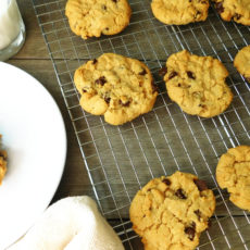 Chocolate Chip Peanut Butter Cookies | Bottom Left of the Mitten