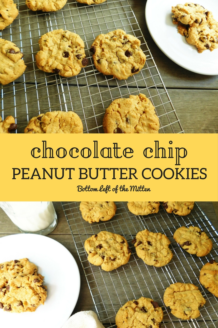 Chocolate Chip Peanut Butter Cookies | Bottom Left of the Mitten #peanutbuttercookies #cookies #coconutoil
