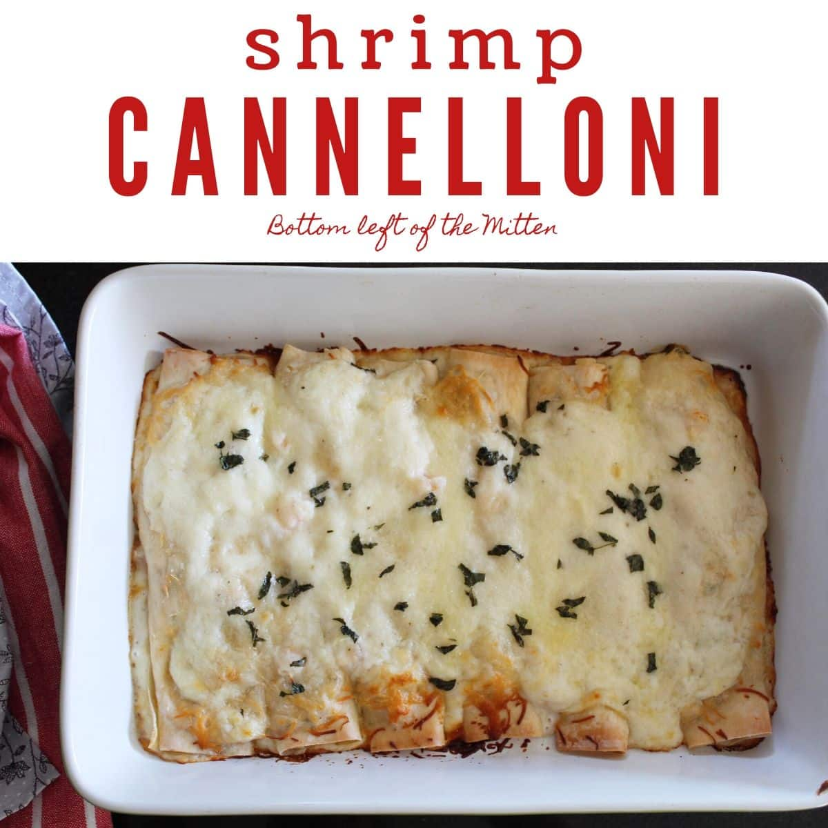 Shrimp Cannelloni | Bottom Left of the Mitten