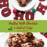 Two shots of Malted Milk Chocolate and Walnut fudge