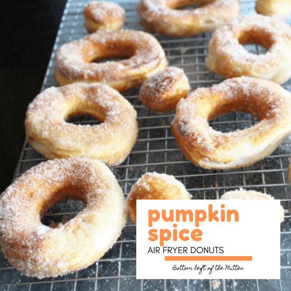 Pumpkin Spice Donuts and donut holes on a cooling rack.