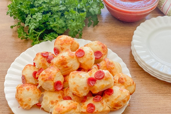 styled shot of air fryer pizza rolls