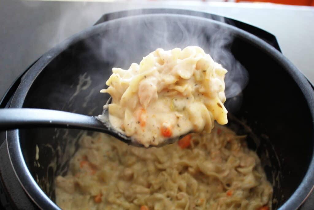 pressure cooker chicken  noodles  bottom left of the mitten